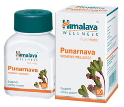 Punarnava (Пунарнава) - эффективно поддержит функцию почек - фото 6798