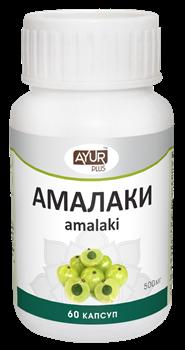 Амалаки - самый знаменитый фрукт в Индии, мощный растительный антиоксидант, иммуномодулятор - фото 6958