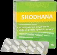 Шодхана - очищение крови и организма