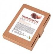 """Натуральный шампунь """"Трифолиатус"""" (порошок S. Trifoliatus), 100 гр"""
