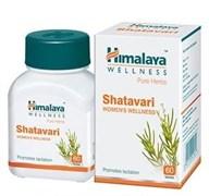 Shatavari (Шатавари) - основное омолаживающее растение для женщин