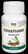 Пунарнава - тоник для почек и мочеполовой системы