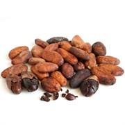 Какао бобы дроблёные 100% ORGANIC (175гр)
