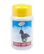 Siva Gutika (Шива Гутика)  - омоложение и очищение организма