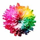 Цветотерапия в аюрведе