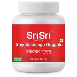 Trayodashanga Guggulu (Трайодашанг гуггул) - препарат для лечения суставных расстройств - фото 10068