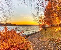 Вебинар «Здоровая осень с Аюрведой» - фото 10264