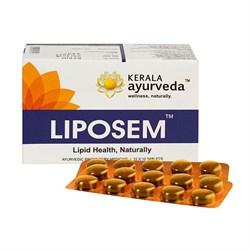 Liposem (Липосем) - очистит кровь и снизит холестерин - фото 10474
