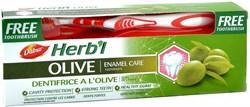 Зубная паста Dabur Herb'l  Olive (с экстрактом оливы), 150 г. + зубная щётка - фото 10896