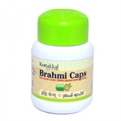 Brahmi (Брами) - расаяна, антиоксидант и тоник для мозга, 60 кап. - фото 11099