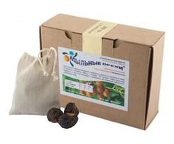 """Мыльные орехи """"Sapindus Trifoliatus"""", 200 гр. - фото 6301"""