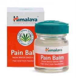 Pain balm (Бальзам болеутоляющий) - фото 6490