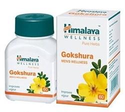 Gokshura (Гокшура) - расаяна, тоник для почек - фото 6794