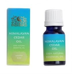 Эфирное масло Гималайский кедр (Himalayan Cedar Oil) 10 мл - фото 6975