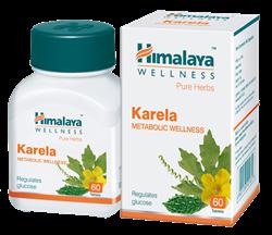 Karela (Карела) - регуляция уровня сахара, нормализация обмена веществ - фото 7207