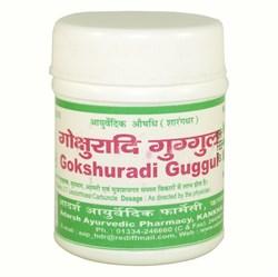 Gokshuradi Guggul Adarsh (Гокшуради гуггул) - эффективное средство при большинстве заболеваний мочевыводящих путей - фото 7829