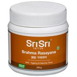 Brahma Rasayana (Брахма Расаяна) - аюрведический тоник для мозга - фото 8346