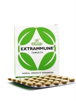 Extrammune (Экстрамун) - иммуномодулятор, защита от инфекций - фото 8707