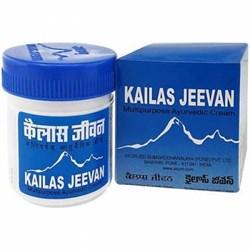 Kailas jeevan (Кайлаш мазь), 60гр - фото 9131