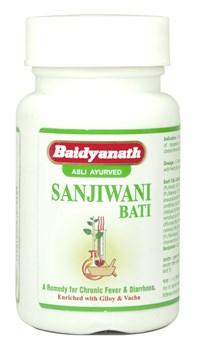 Sanjivani bati (Сандживани вати) - укрепляет иммунитет и очищает организм от токсинов - фото 9808