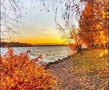Вебинар «Здоровая осень с Аюрведой»