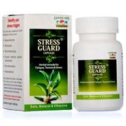 Stressguard (Стрессгард) - расаяна для мозга, баланс нервной системы, защита от стресса