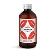 Livomyn Syrop (Ливомин Сироп) - гепатопротектор, желчегонное, антивирусное средство