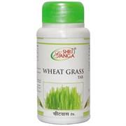 Ростки пшеницы (Wheat grass) в таблетках - для повышения и укрепления иммунитета