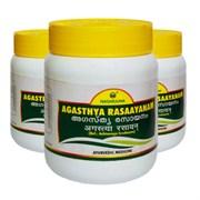 Agasthya rasaayanam (Агастья Расаяна) - для здоровья дыхательных путей, 100 гр